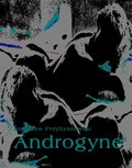 Androgyne - ebook